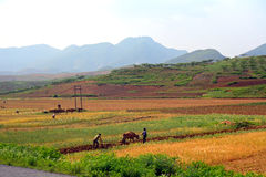 Countryside, North-Korea Stock Photo