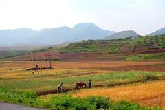 Countryside, North-Korea Stock Photo