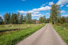 The countryside of Ostergotland in Sweden. The countryside of Ostergotland at Rodga outside Norrkoping in Sweden Royalty Free Stock Images
