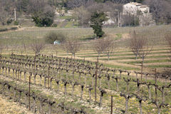 Countryside outside Bonnieux; Provence. France Stock Photo