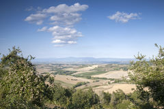 Countryside outside Montepulciano Village, Tuscany Royalty Free Stock Photo