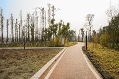 Countryside painted path in sunny winter afternoon. Chengdu,China royalty free stock photo