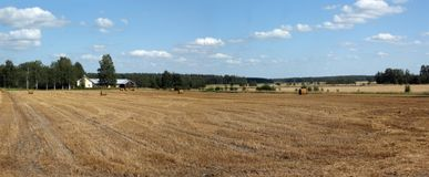Countryside panorama Royalty Free Stock Photo