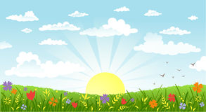 Countryside panorama in the morning. Vector illustration of beautiful landscape. Rural scene with green field and bright sun on a summer morning Royalty Free Stock Photos