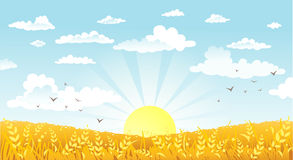 Countryside panorama in the morning Royalty Free Stock Images