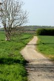 Countryside path Royalty Free Stock Images