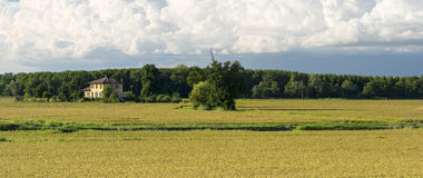 Countryside of Pavia (Italy) Stock Photography