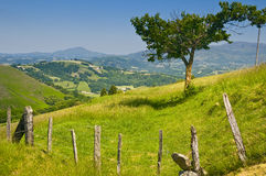 Countryside in Pays Basque, France. With outskirts of the Pyrenees mountains stock photo
