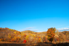Countryside. This photo was taken in a fall morning, in a country northeast China Stock Image