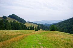 Countryside in Pieniny hills Stock Photo