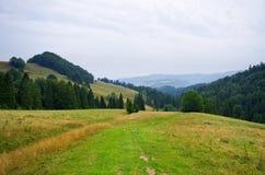 Countryside in Pieniny hills Stock Photo