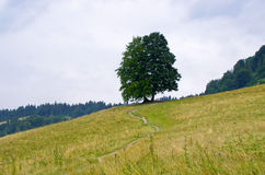 Countryside in Pieniny hills Royalty Free Stock Photography