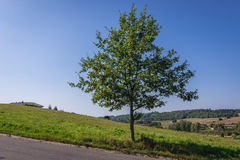Countryside in Poland Royalty Free Stock Photo
