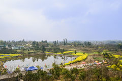 Countryside pond in flowering spring on sunny day Stock Photography