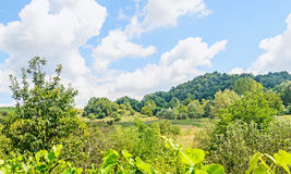 Countryside of region Horezu with hills, forests and fileds, sum. Mer time Stock Photo