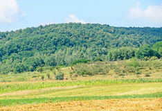 Countryside of region Horezu with hills, forests and fileds. Summer time Royalty Free Stock Photos