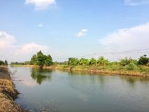 Countryside and river landscape. Countryside and river landscape at Ayutthaya, Thailand Royalty Free Stock Photography