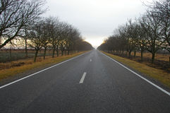 Countryside road Stock Photos