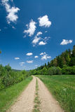 Countryside road. Beautiful summer day stock image