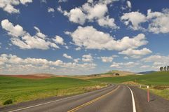 Countryside road in Colfax. Countryside road near Colfax in Washington State royalty free stock photo