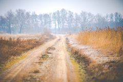 Countryside road. Or path through field leading to forest royalty free stock images