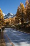 Countryside road in Dachstein mountains in Austria Stock Photos
