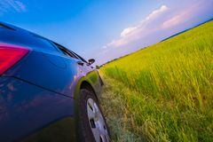 Countryside Road Drive Royalty Free Stock Images