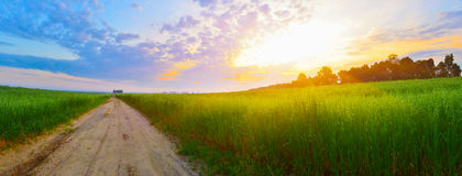 Countryside road. Early in the morning royalty free stock images