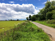 Countryside Road - Farmland Royalty Free Stock Photo