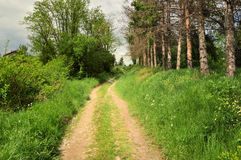 Countryside road through the fields Royalty Free Stock Photography
