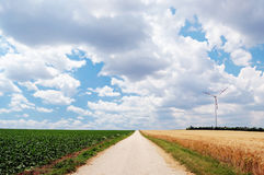 Countryside road in fields Stock Images