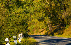 Countryside road through forest Royalty Free Stock Images