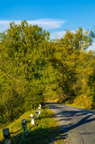 Countryside road through forest Royalty Free Stock Image