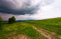 Countryside road through grassy field. Beautiful mountainous landscape of Carpathians before the storm Royalty Free Stock Photo
