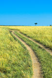 Countryside road, green grass and blue sky Royalty Free Stock Images