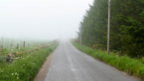 Road fog Royalty Free Stock Photos