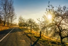 Countryside road in late autumn fog at sunrise Stock Photo
