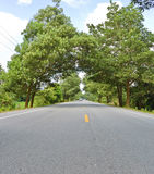 Countryside road in low angle view Royalty Free Stock Photo