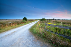 Countryside road in moonlight Royalty Free Stock Photo