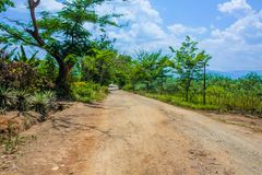 Countryside Road in myanmar royalty free stock image