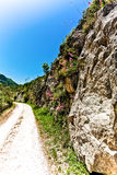 Countryside road in a park in Italy Stock Photography
