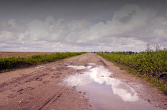 Countryside road after rain Royalty Free Stock Images