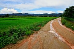 Countryside road after rain. Royalty Free Stock Image