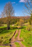 Countryside road through rural area in mountains. Lovely springtime scenery Royalty Free Stock Photography