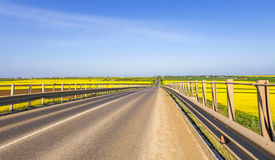 Countryside road in spring Royalty Free Stock Photography