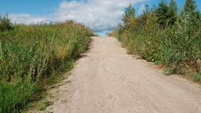 Countryside road in summer day in Siberia, Russia royalty free stock photography