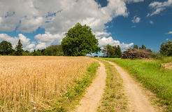 Countryside road in summer, Europe Royalty Free Stock Images