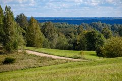 Countryside road in summer with large trees on both sides. Latvia royalty free stock images