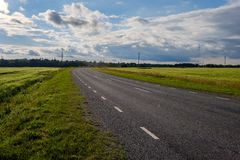 Countryside road in summer with large trees on both sides. Latvia stock photos