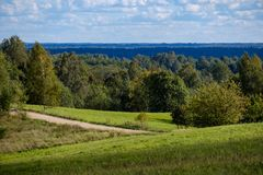 Countryside road in summer with large trees on both sides. Latvia royalty free stock photos